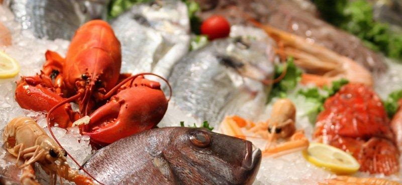 American Seafood Imports